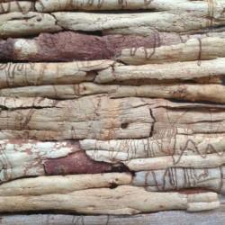 Парфюм Sandal Wood