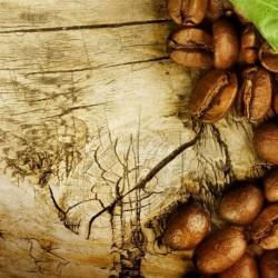 КАФЕ  - ароматно масло